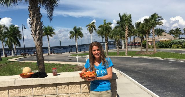 Fruits, berries and melons @ Port Charlotte, Florida, USA - Cristela GEORGESCU 2019